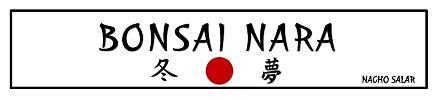 Bonsai Nara